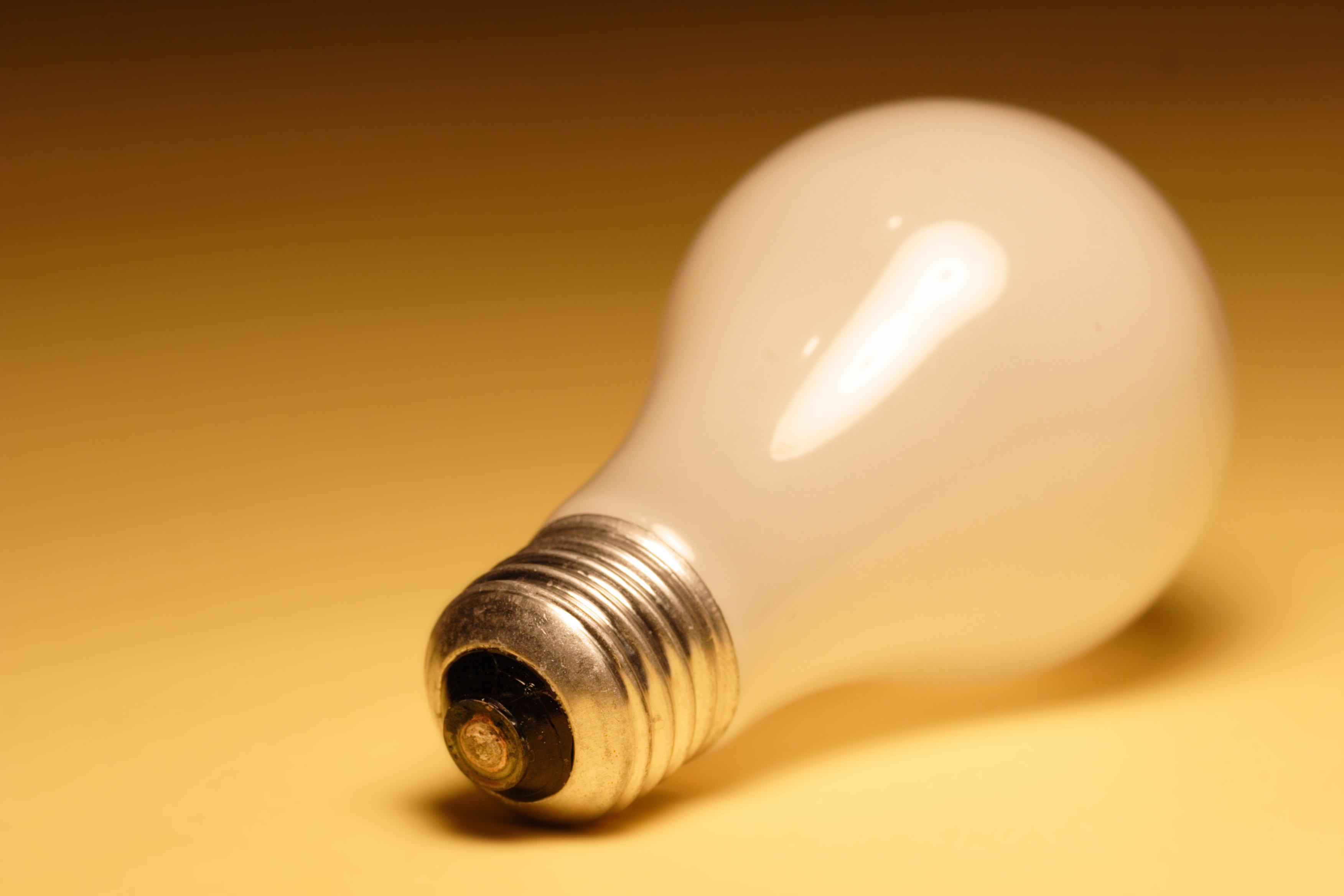 Light bulb identification: energy efficiency takeover