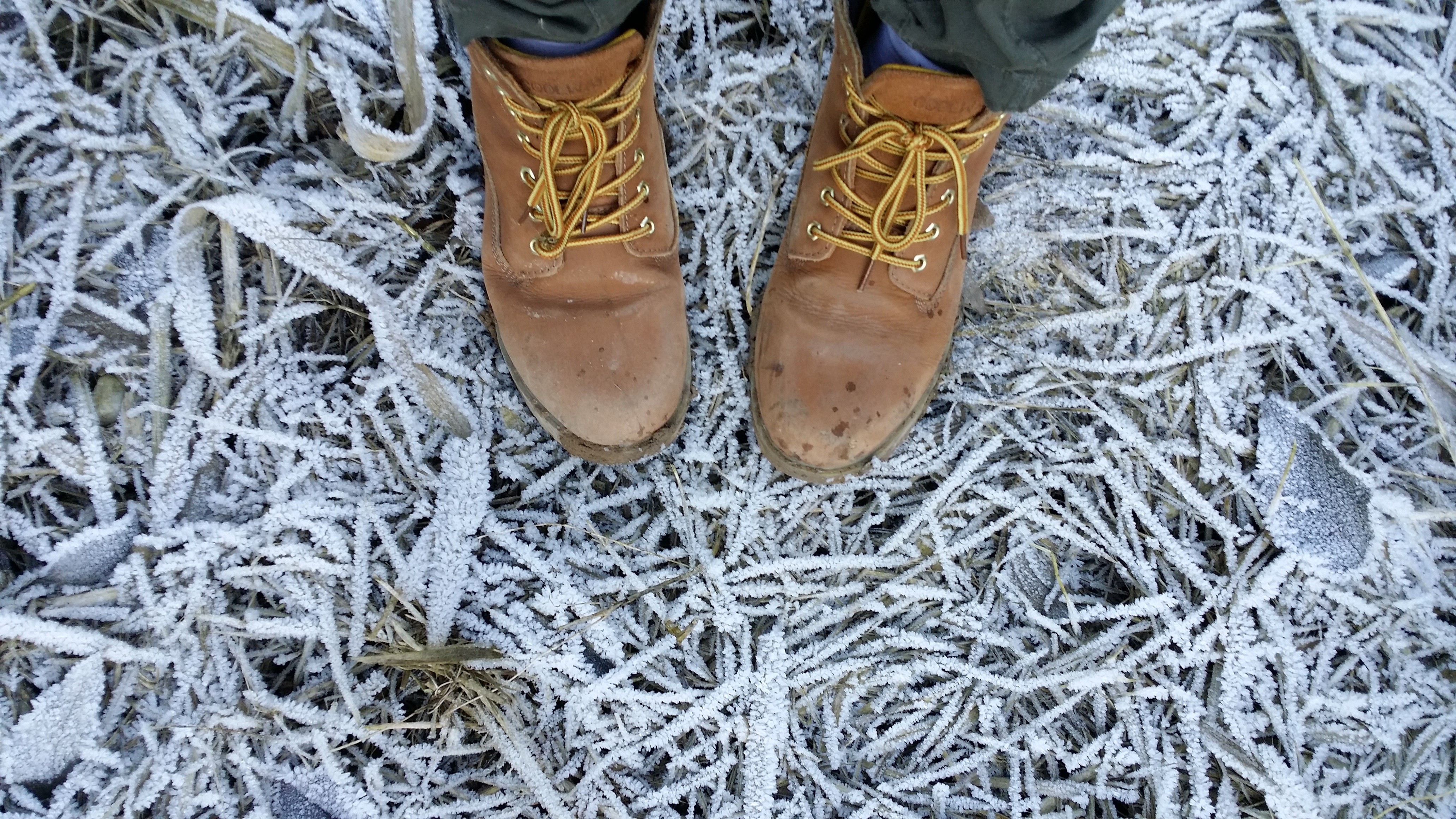 Winter job site safety